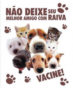 campanha antirrabica  250x300 Centro de Zoonoses de Petrolina divulga novo cronograma da Campanha de Vacinação Antirrábica