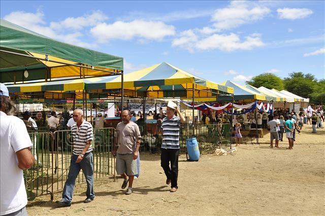 feira pinhões