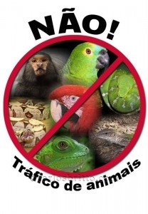 Tráfico-de-Animais