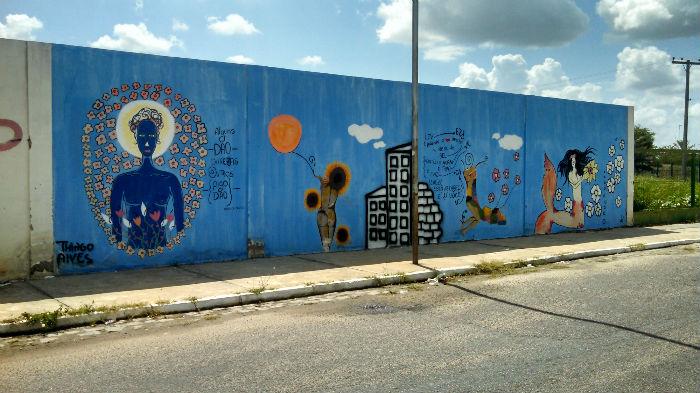 muro compesa (2) 2