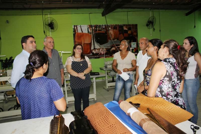 Adesivo De Arvore Para Fotos ~ Sest Senat de Petrolina promoverá curso gratuito de artesanato em couro Blog do Carlos Britto