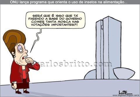 Insetos-e-Dilma-por-Lute