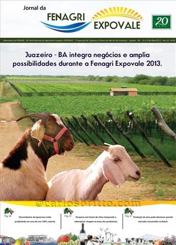 Jornal-da-Fenagri-completa-20-anos