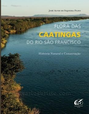 flora_caatinga