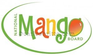 9 - Logomarca Mango Board
