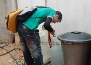 dengue(1)