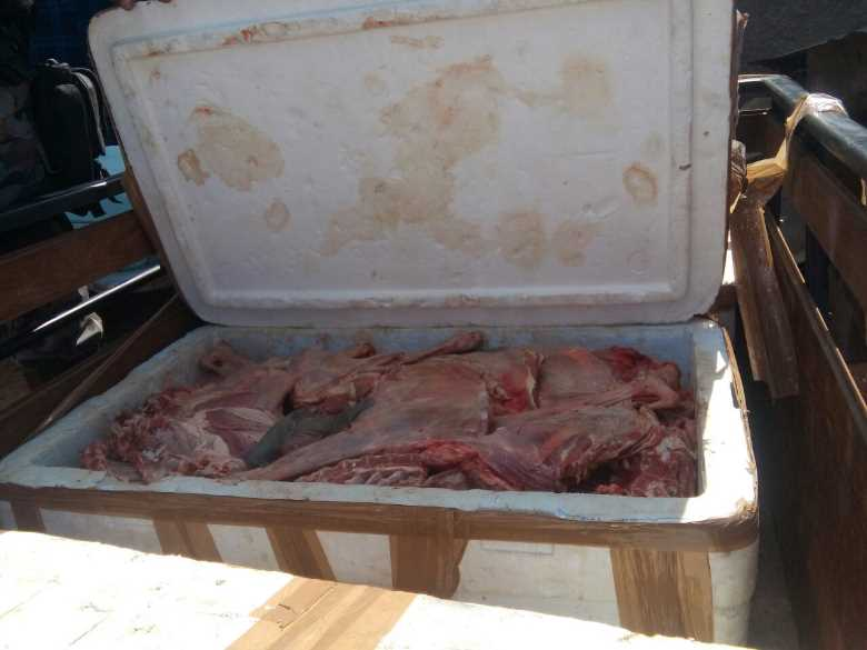 carne-apreendida-petrolina